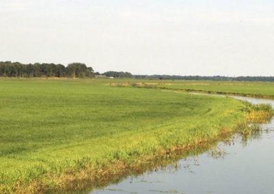 Beekdalenvisie Drenthe