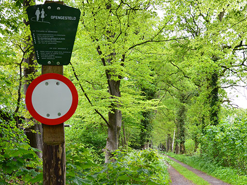 Landgoed In Drenthe