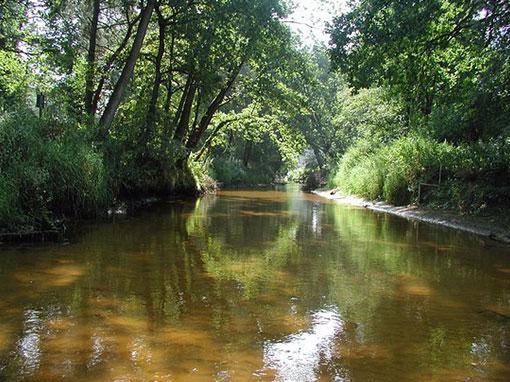 Natura 2000 | KRW | bestuursverklaring Dinkeldal