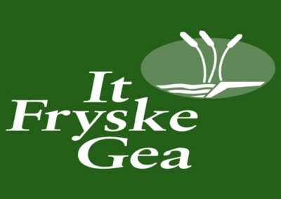 Governance It Fryske Gea