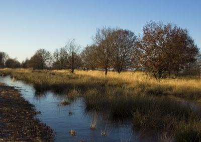 Versterking recreatieve ontwikkeling in en rond het Bargerveen