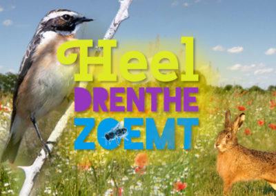 Heel Drenthe zoemt