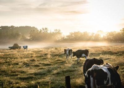Programmamanager Agroprogramma Groningen